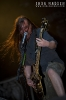 2009-bloodstock-carcass_0028-copy