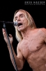 2010-iggy-pop-at-sonisphere_0016-crop-copy