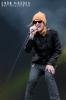 2011-puddle-of-mudd-at-download-by-enda-madden_0141-copy